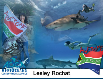Lesley Rochat – The Shark Warrior