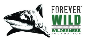 WildernessFoundation